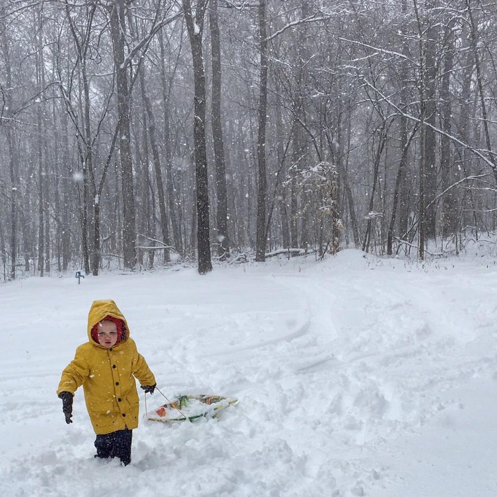 Nashville 2016 Snow