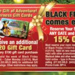 Wilderness at the Smokies Black Friday Deal
